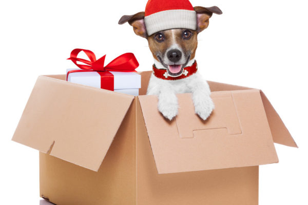 long distance movers, Priority Moving, Chula Vista, CA